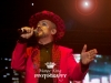 2016 06 08 Culture Club Live Perth by Maree King (7)