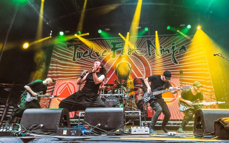 2019 03 09 Download Sydney 11 Twelve Foot Ninja (5)