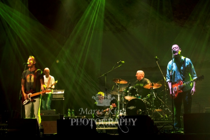 A Day On The Green Perth 22 Nov 2015 James Reyne by Maree King  (3)