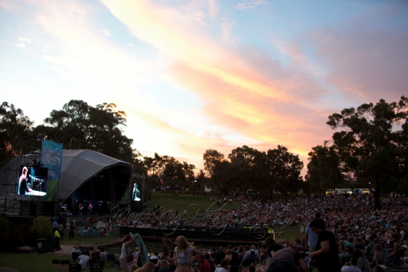 evening-on-the-green-16-nov-2013-by-maree-king-2