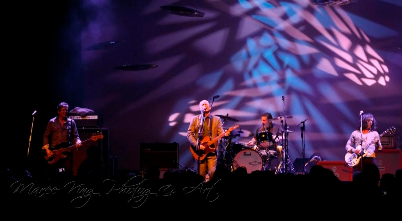 hoodoo-gurus-live-in-perth-28-april-2013-by-maree-king-11