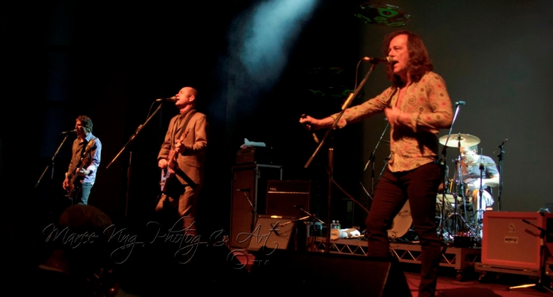 hoodoo-gurus-live-in-perth-28-april-2013-by-maree-king-6