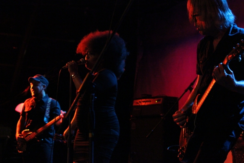 The Bellrays LIVE Fremantle 21 Nov 2013 by Shane Pinnegar  (19)