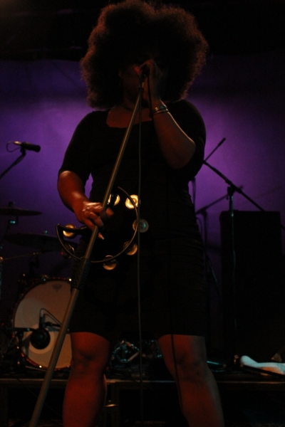 The Bellrays LIVE Fremantle 21 Nov 2013 by Shane Pinnegar  (2)