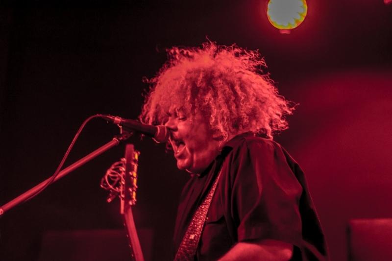 King Buzzo LIVE Perth 26 Aug 2014 by Stuart McKay  (5)