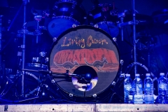 LIVE Living Colour Perth 19 May 2017 by Peter Gardner