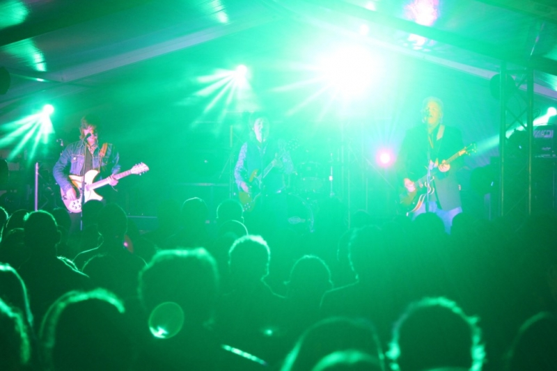 2014 05 31 State Of The Art Festival Perth - The Stems  (12)