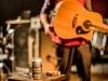 Nick Oliveri LIVE Perth 2017 04 02 by Stuart McKay (1)
