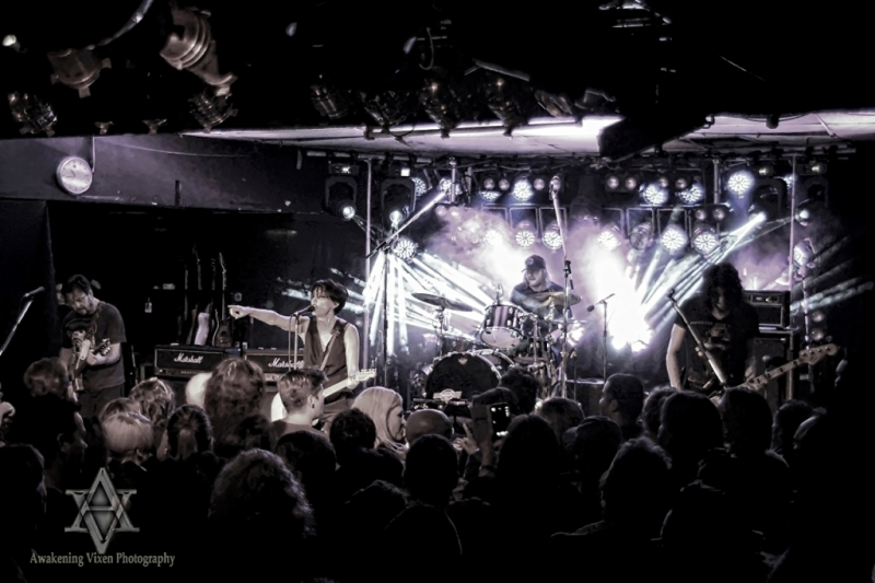 She Who Rocks 22 May 2015 - Baby Animals by Awakening Vixen (8)