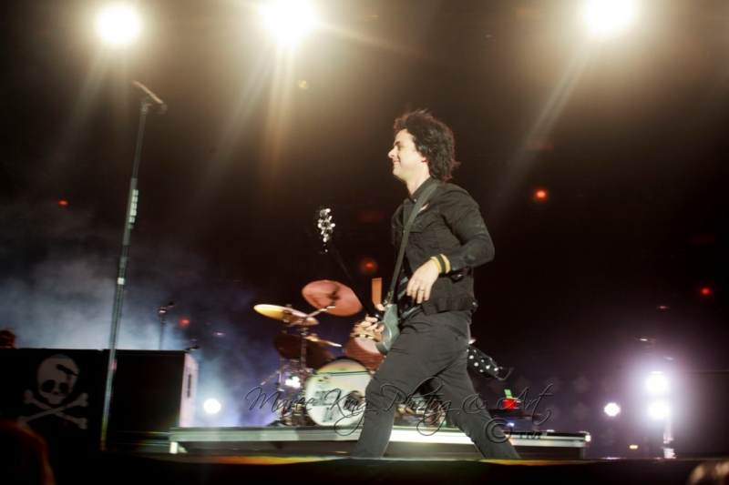 Soundwave Perth 2014 by Maree King - Green Day  (3)