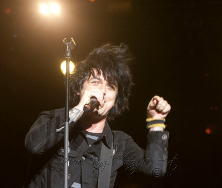 Soundwave Perth 2014 by Maree King - Green Day  (7)