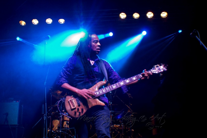 Soundwave Perth 2014 by Maree King - Living Colour  (7)