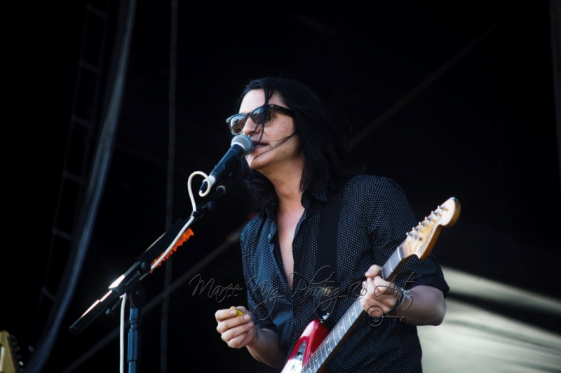 Soundwave Perth 2014 by Maree King - Placebo  (1)