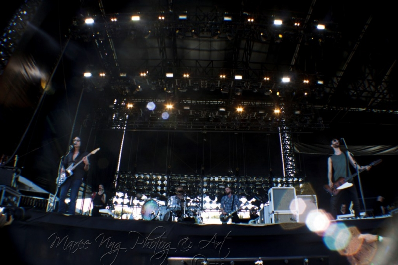Soundwave Perth 2014 by Maree King - Placebo  (10)