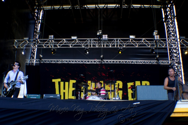 Soundwave Perth 2014 by Maree King - The Living End  (3)