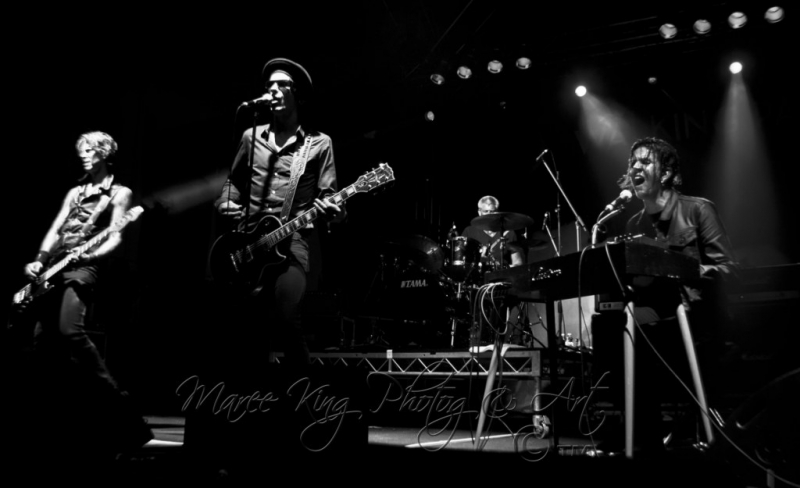 Soundwave Perth 2014 by Maree King - Walking Papers  (2)