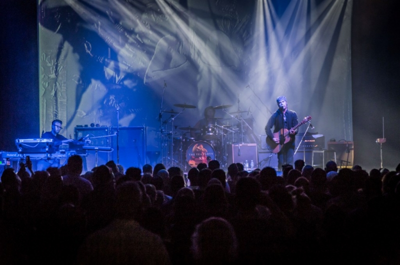 The Tea Party LIVE Perth 9 Nov 2015 by Stuart McKay  (24)
