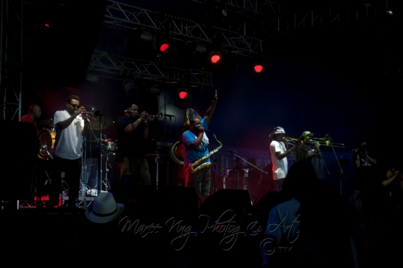 West Coast Blues & Roots 13 Apr 2014 - Soul Rebels by Maree King (3)