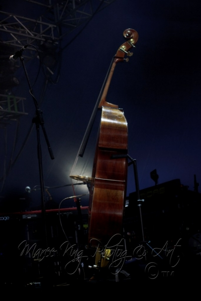 West Coast Blues & Roots 13 Apr 2014 - Steve Earle  by Maree King  (1)