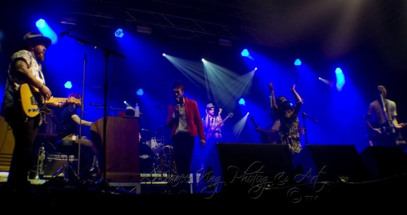 West Coast Blues & Roots 13 Apr 2014 - Ed Sharpe by Maree King  (5)