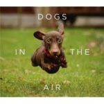 BOOK REVIEW: Dogs in the Air by Jack Bradley